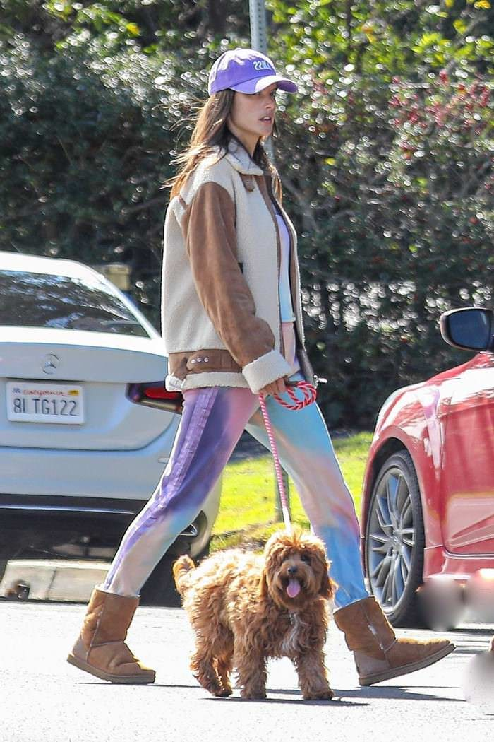 Alessandra Ambrosio Dog Walk Around Her Santa Monica Neighborhood
