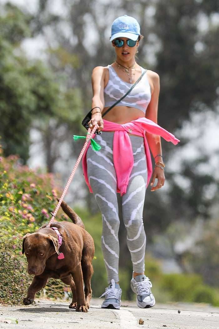 Alessandra Ambrosio in a Gray Sports Bra Hiking With her Dog
