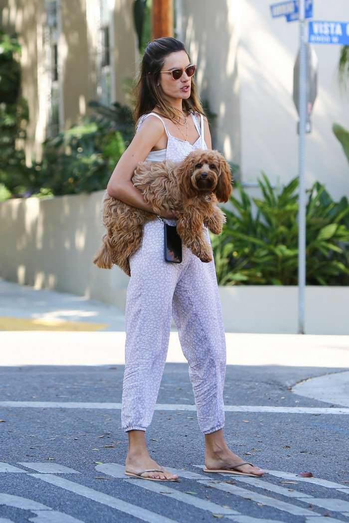Alessandra Ambrosio in a Loose-fitting Jumpsuit Carries her Doggy