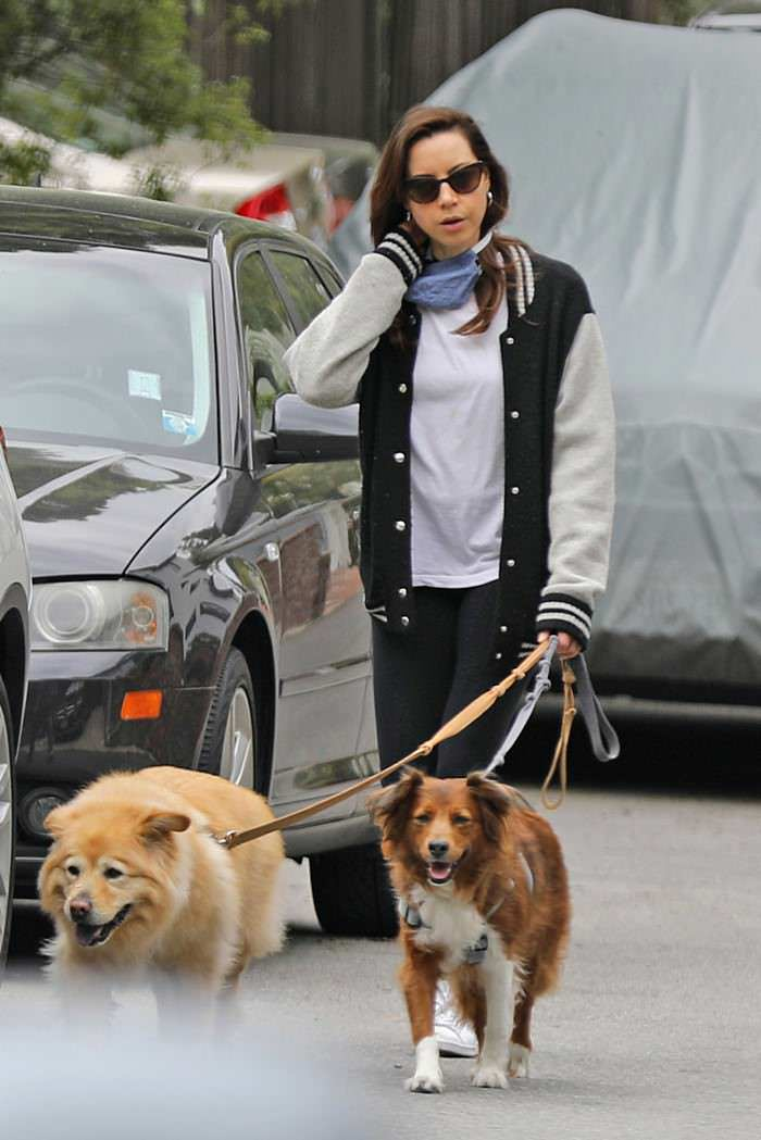 Aubrey Plaza Gets a Breath of Fresh Air While Walking Her Dogs