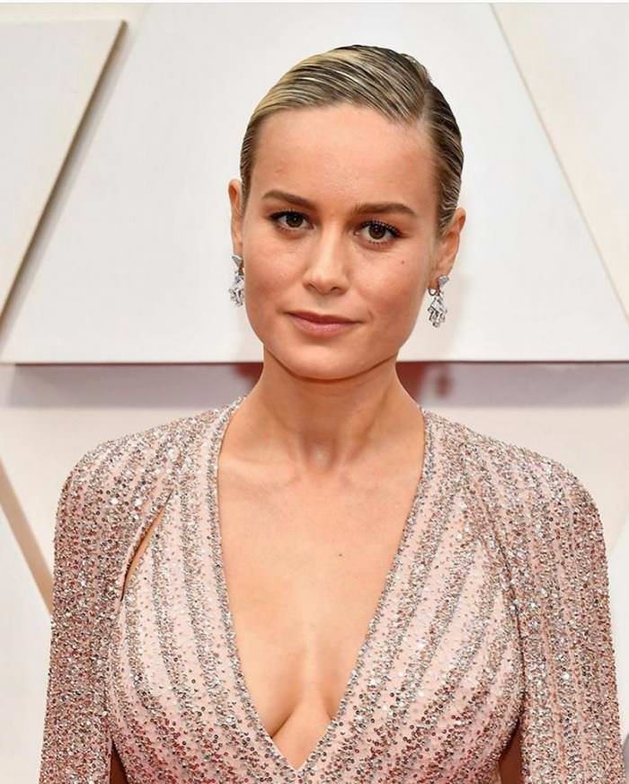 Brie Larson at 92nd Annual Academy Awards Oscars 2020 Red Carpet in LA