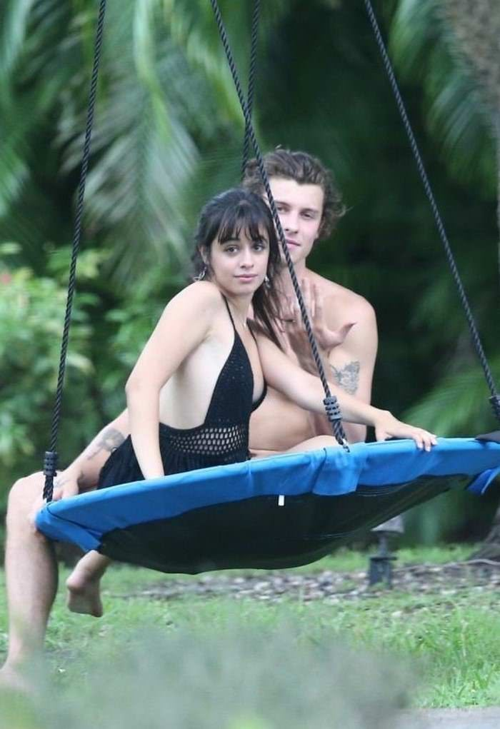 Camila Cabello and Shawn Mendes Cuddle Up on a Swing
