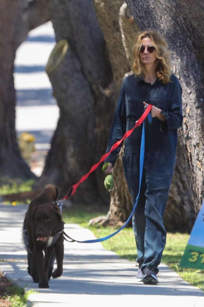 Julia Roberts Walks Her Dogs Around Malibu