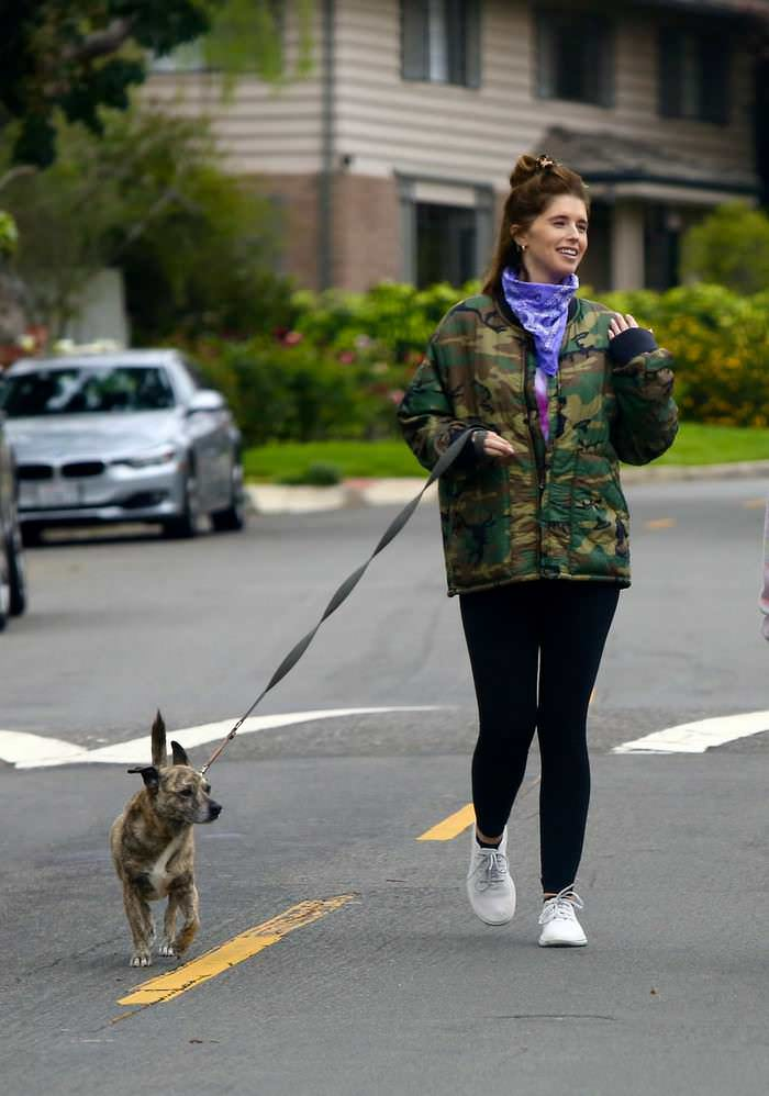 Katherine Schwarzenegger and Maria Shriver Walk Their Dogs in LA