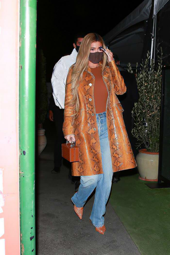 Kylie Jenner Stepped Out for Dinner with Friends in Santa Monica