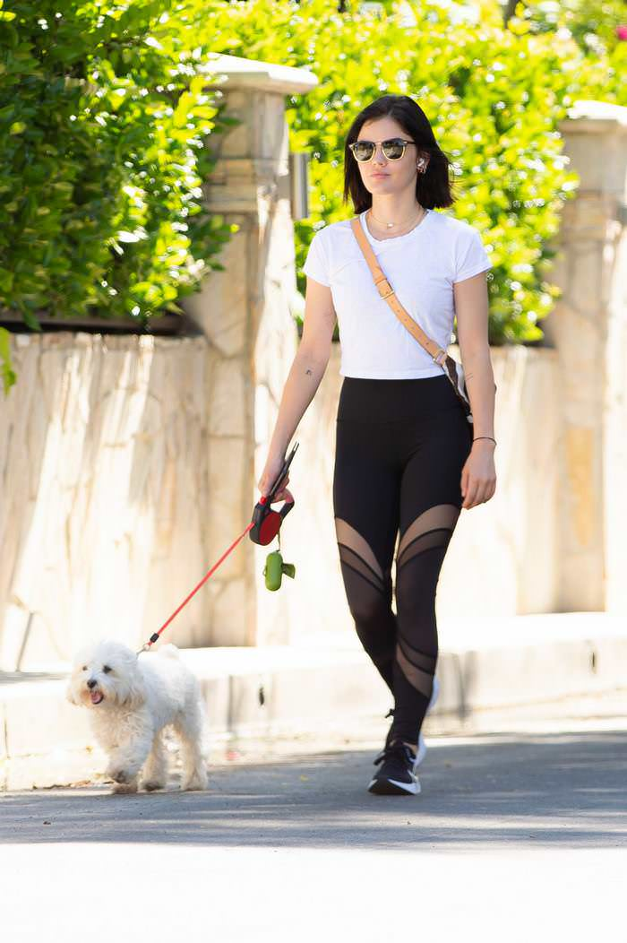 Lucy Hale in Leggings as She Takes the Dog on a Walk Through LA