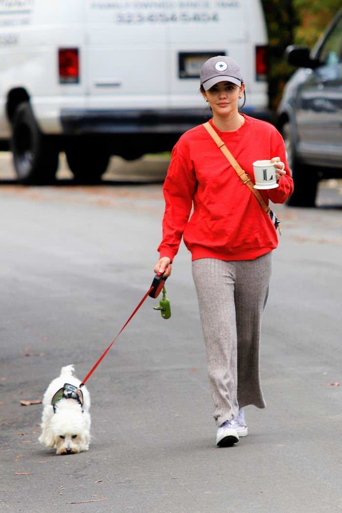 Lucy Hale Relaxed Walking Her Dog in Los Angeles