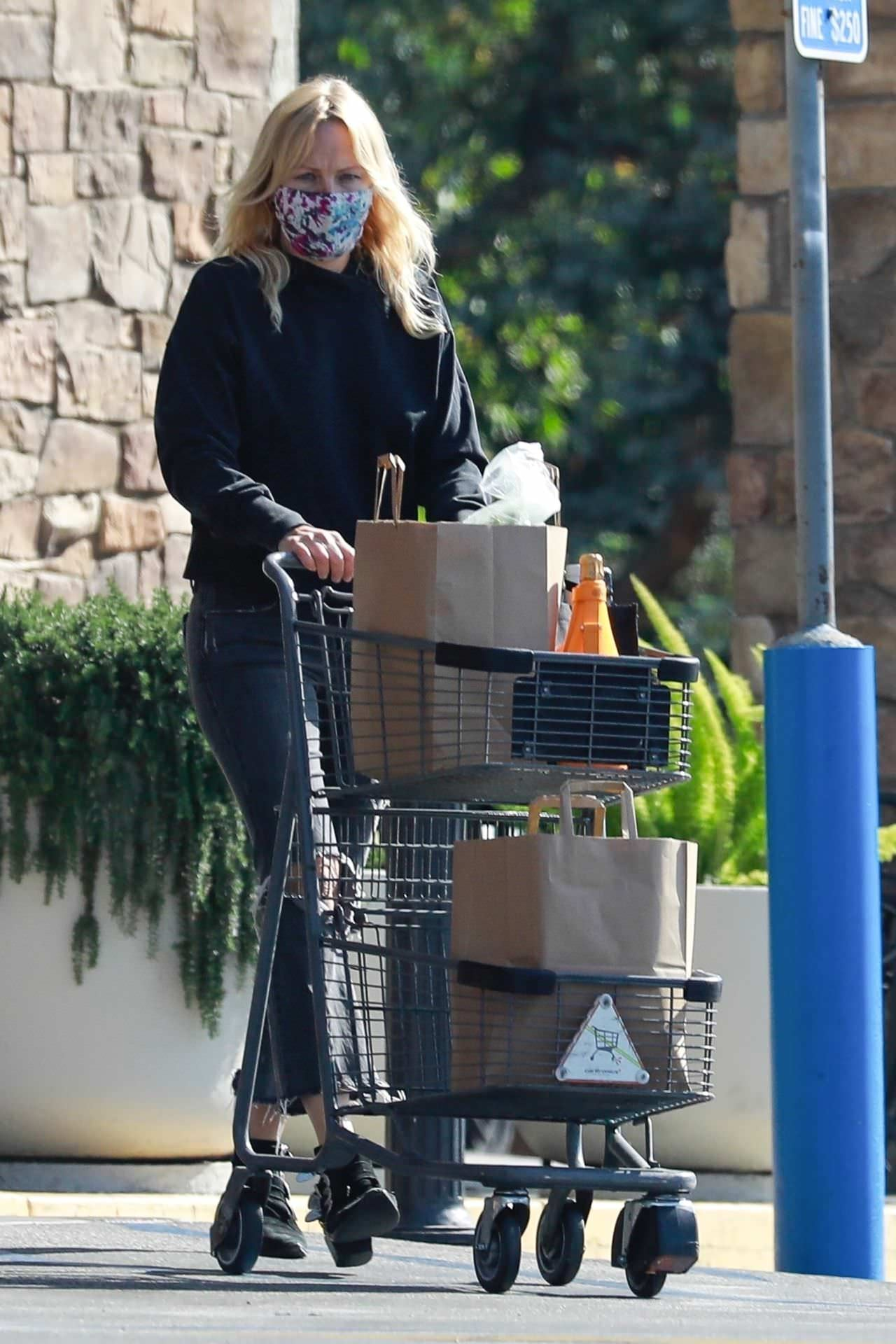 Malin Akerman in Grocery Shopping in Los Feliz