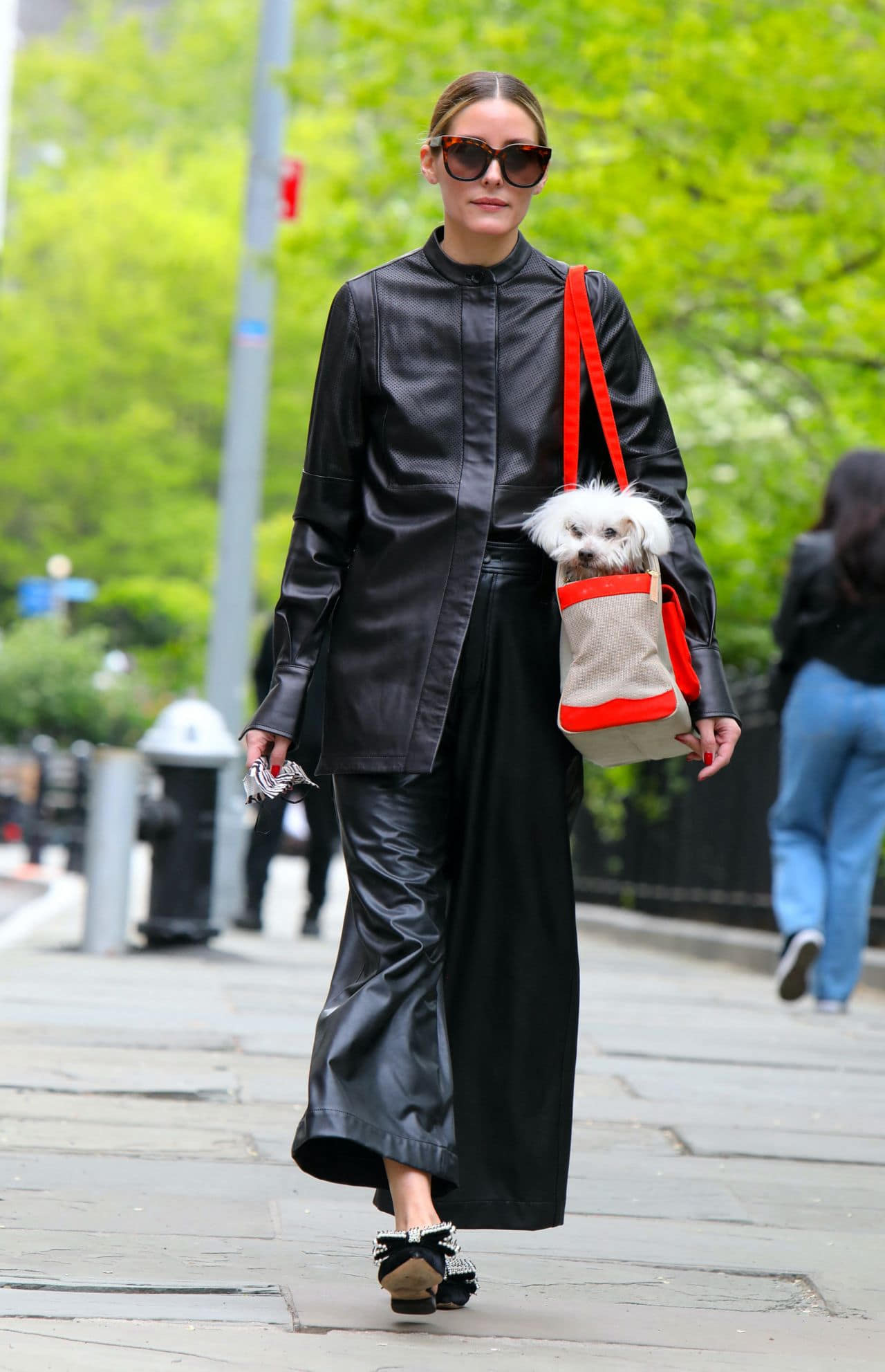Olivia Palermo at the Park in Brooklyn with her Puppy