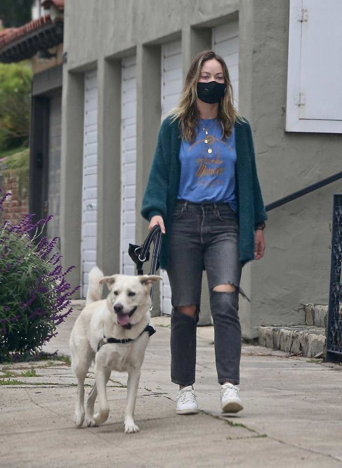 Olivia Wilde Walks Her Dog Around Her Neighborhood