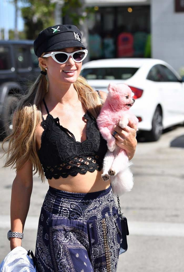 Paris Hilton Flashes Skin as She Was Shopping in Malibu