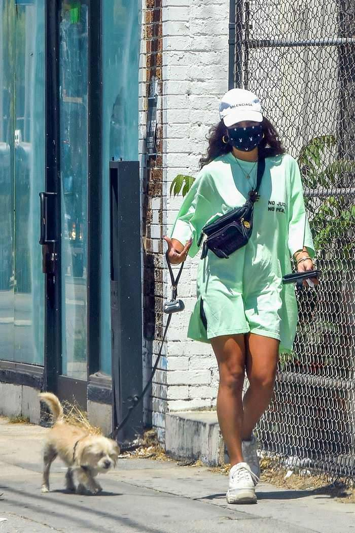 Vanessa Hudgens Steps Out in a Baggy T-shirt with Her Dog Darla